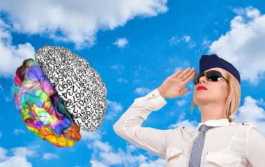 brain-pilot-flight-attendant